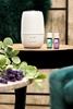 AD-303 Urządzenie do aromaterapii CLEAN AIR OPTIMA