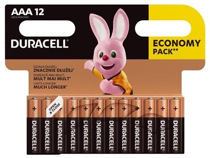 12 x bateria alkaliczna Duracell Basic LR03 AAA (blister)