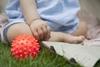 Sensorky Piłeczka sensoryczna Czerwony jeżyk 1 szt w torebce