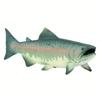 XL Safari Ltd 100205 Łosoś 1:4   17x4,5x6,5cm