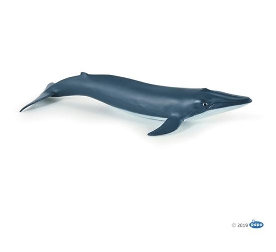 Papo 56041 młody Płetwal błękitny  10x9,5x3,5cm