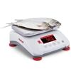 Waga VALOR 4000 z legalizacją kuchenna gastronomiczna wodoodporna IP68 LED 15Kg / 5g - OHAUS V41PWE15T-M