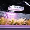 Lampa do uprawy wzrostu roślin Hillvert LED 300W biała