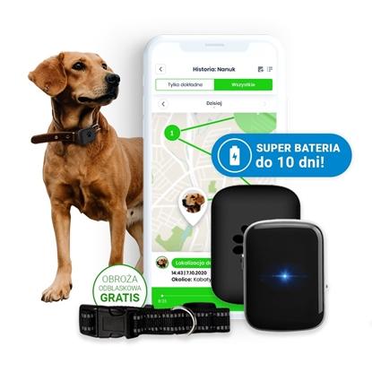 Locon Dog - Wodoodporny Lokalizator GPS dla psa z wytrzymałą baterią i obrożą odblaskową