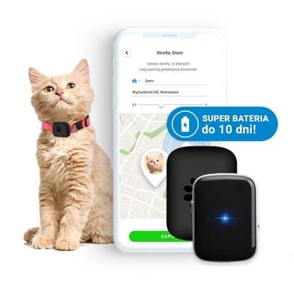 Locon Cat - Wodoodporny Lokalizator GPS dla kota z wytrzymałą baterią i obrożą odblaskową